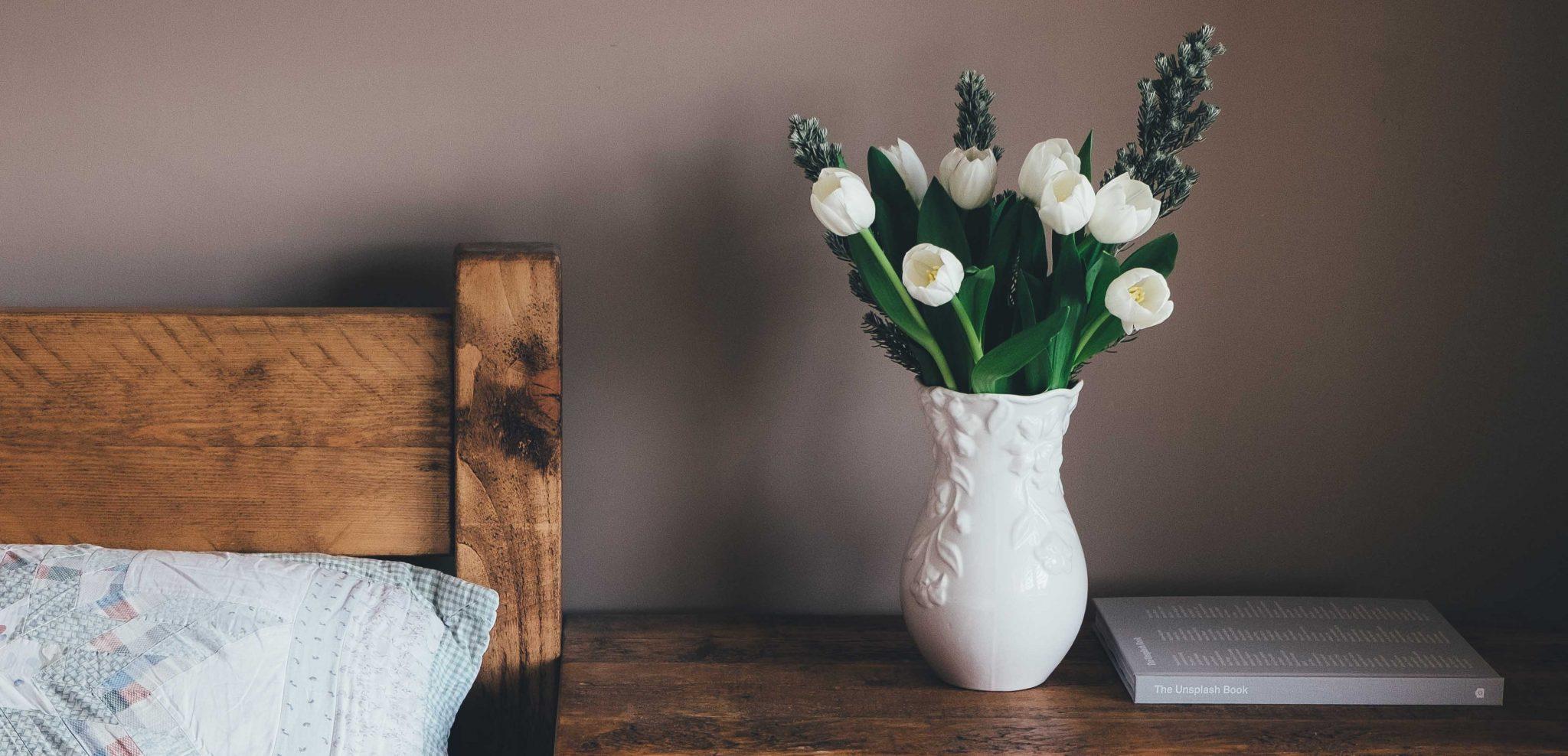 Bir Acayip Bilgiler #17: Ev çiçekleri bize nasıl zarar verebilirler? -   i  ek - Bir Acayip Bilgiler #17: Ev çiçekleri bize nasıl zarar verebilirler?