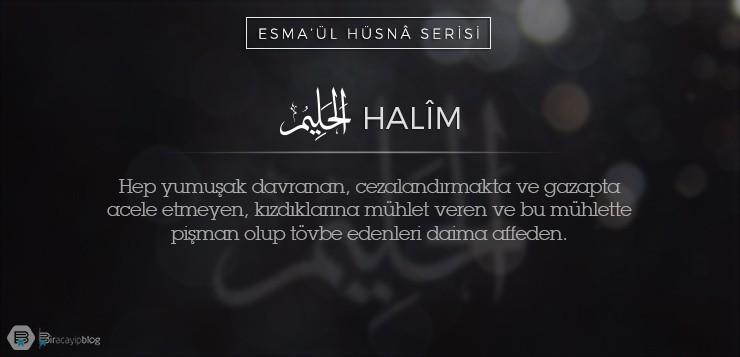 Esma'ül Hüsnâ Serisi #33: Halîm - 33Halim - Esma'ül Hüsnâ Serisi #33: Halîm
