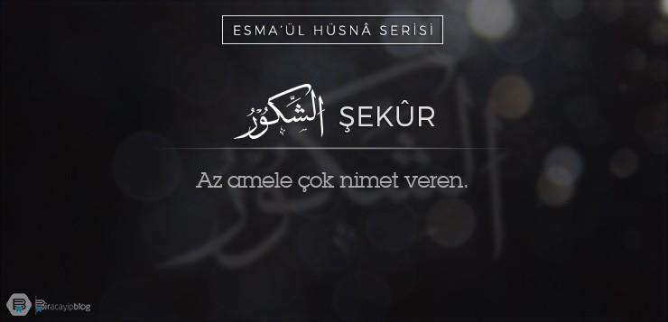 Esma'ül Hüsnâ Serisi #36: Şekûr - 36  ekur1 - Esma'ül Hüsnâ Serisi #36: Şekûr