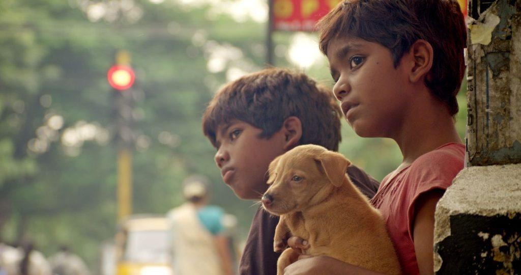 k3 Zeytin Gözlü Çocukların Sineması: Hindistan - K3 1024x540 - Zeytin Gözlü Çocukların Sineması: Hindistan